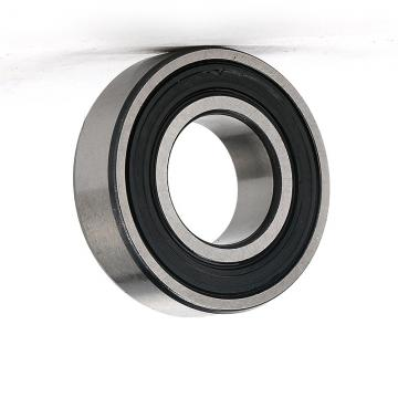 High Performance 6003 Zz 2RS Electric Motor Bearing
